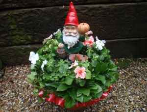 Garden Gnome With Busy Lizzie, Burgess Hill