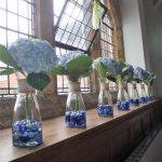Hydrangeas In Vases